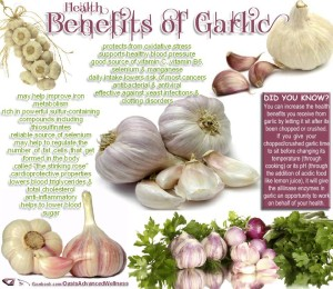 Garlic - Austin Chiropractic - Dr. James Lee