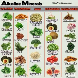 Minerals - Austin Chiropractic - Dr. James Lee