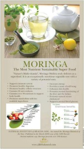 Moringa - Austin Chiropractic - Dr. James Lee