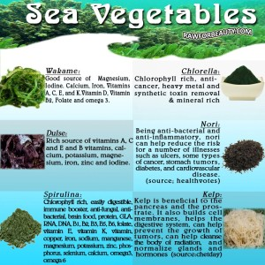 SeaVegies - Austin Chiropractic - Dr. James Lee