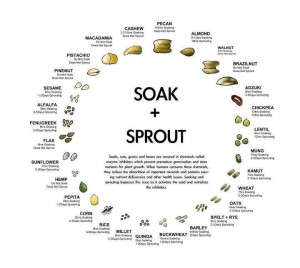 Soak and sprout - Austin Chiropractic - Dr. James Lee