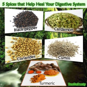 Spices - Austin Chiropractic - Dr. James Lee