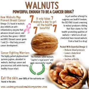 Walnuts - Austin Chiropractic - Dr. James Lee